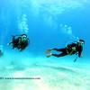divers kailuabay9 112715fri