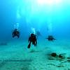 divers kailuabay 112715fri