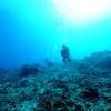 divers naiabay 110715sat