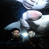 divers manta keauhou10 110515thurs