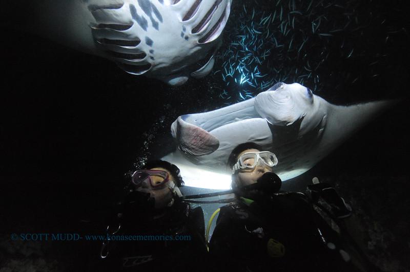 divers manta keauhou7 110515thurs