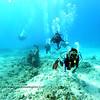 divers kailuabay2 112715fri