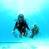 divers kailuabay5 112715fri