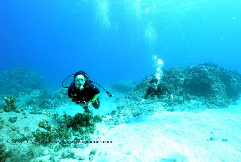 divers turtleheaven 111615mon
