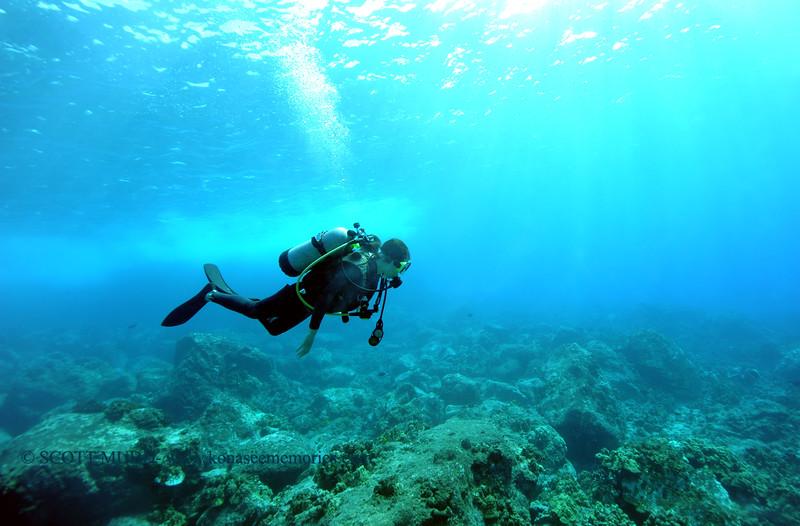 diver mermaidrock 112815sat