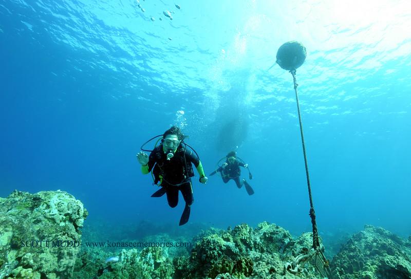 divers naiabay2 111615mon
