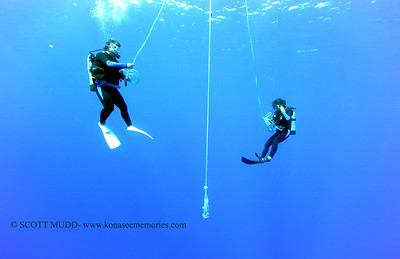 divers bluewater 120815tues