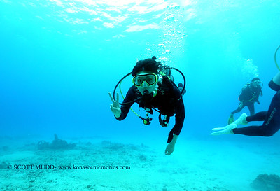 diver (ダイバー)