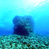 underwater pinnacle (浅瀬)