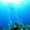 diver bubbles (ダイバー達の泡)