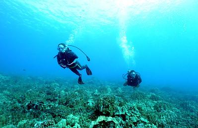divers kamanu4 010616tues