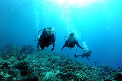 divers bodyglove3 101016mon
