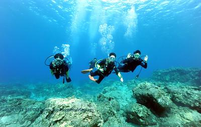 divers turtleheaven3 100416tues
