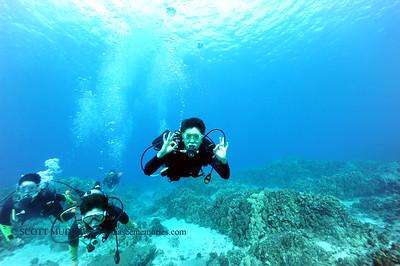 divers turtleheaven7 100416tues
