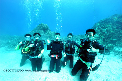 divers turtleheaven9 100416tues