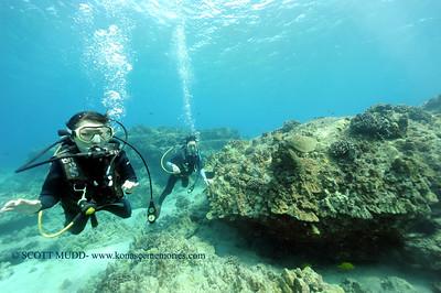 divers turtle turtleheaven7 102816fri
