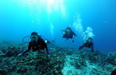 divers bodyglove4 101016mon