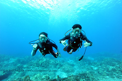 divers turtleheaven4 100416tues