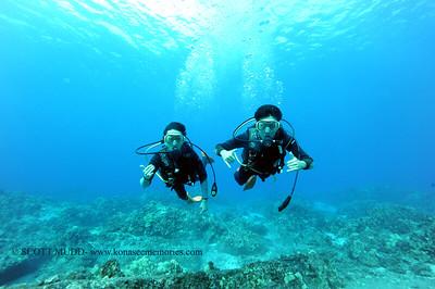 divers turtleheaven5 100416tues