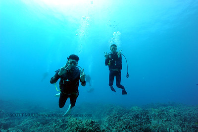 divers kailuabay5 110916wed