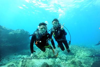 divers turtleheaven7 111916sat