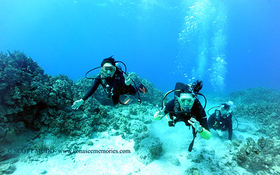 divers turtleheaven8 111916sat