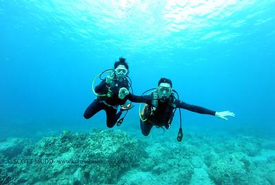 divers turtleheaven3 120116thurs