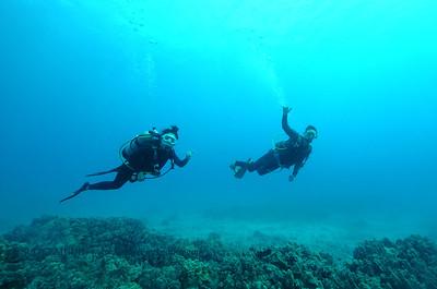 divers kailuabay 120116thurs