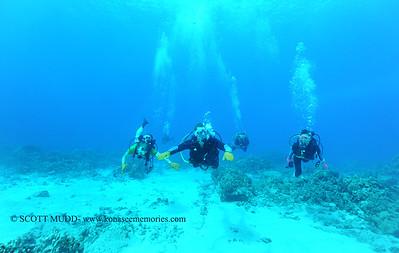 divers naiabay 120116thurs