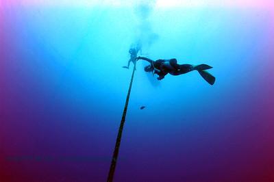 divers nakedlady 020116mon