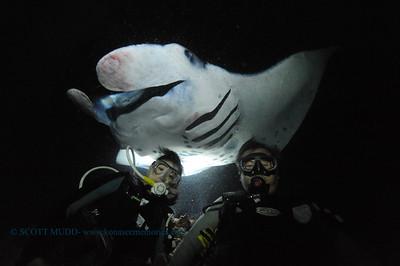 divers manta12 keauhou 020116mon