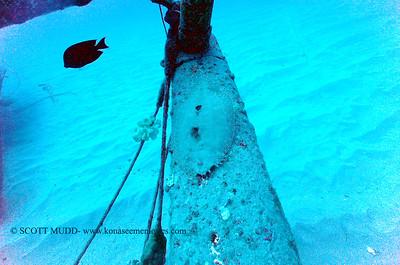 flounder3 nakedlady 020116mon
