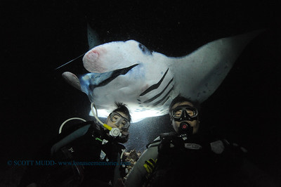 divers manta13 keauhou 020116mon