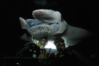 divers manta 23  keauhou 020116mon