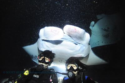 divers manta keauhou3 020116mon