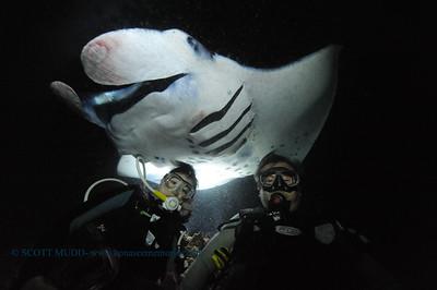 divers manta11 keauhou 020116mon