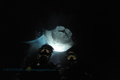 divers manta keauhou5 020116mon