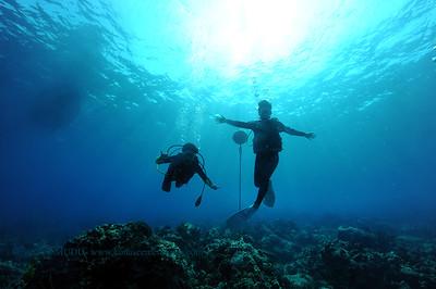 divers naiabay3 031516tues