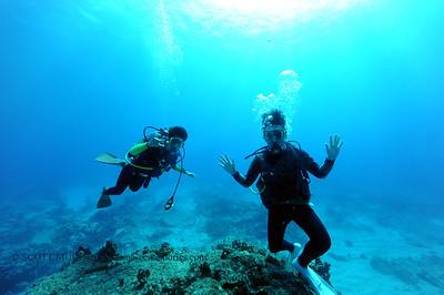 divers naiabay 031516tues