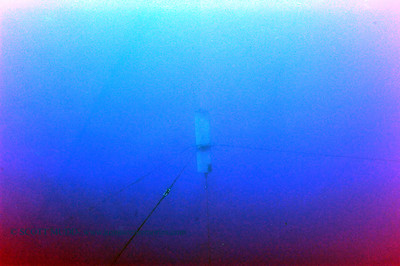 fishfarm bluewater3 gec 042016wed