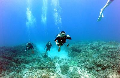 diver kailuabay6 042616tues