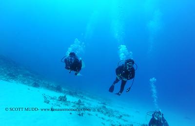 divers naiabay3 050116sun