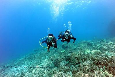divers kamanu3 050616fri