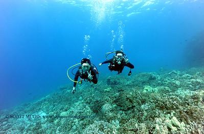 divers kamanu2 050616fri