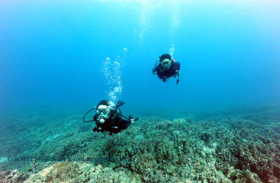 divers kailuabay 0506116fri