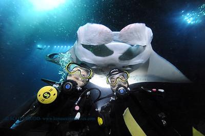divers manta keauhou2 050216mon