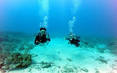 divers kailuabay4 0506116fri