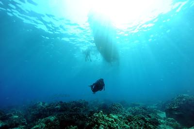 divers naiabay4 050116sun