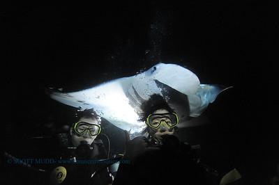 divers manta9 keauhou 060716tues