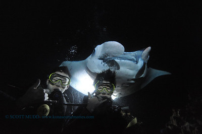 divers manta2 keauhou 060716tues